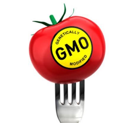 Genetically Modified Foods: Mandatory Labeling and the